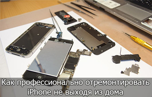 Как профессионально отремонтировать iPhone не выходя из дома